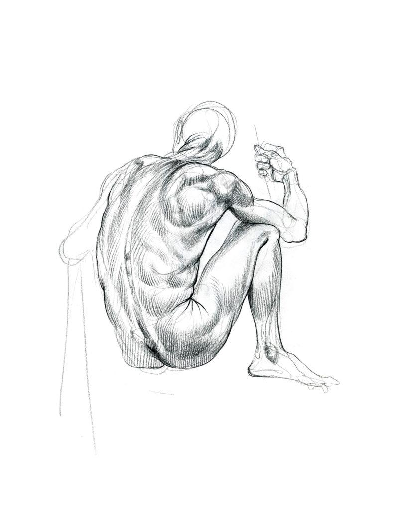 Anatomy Life Drawing